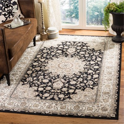 Carolus Traditional Black/Ivory Area Rug Rug Size: Rectangle 22 x 37