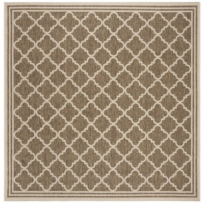 Berardi Brown/Cream Area Rug Rug Size: Square 67