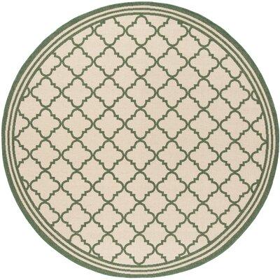 Berardi Cream/Green Area Rug Rug Size: Round 67