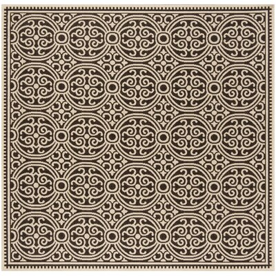 Burnell Brown Area Rug Rug Size: Square 67