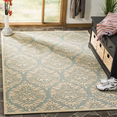 Burnell Aqua/Cream Area Rug Rug Size: Rectangle 51 x 76