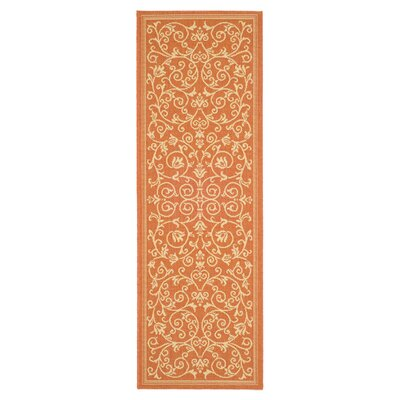 Bexton Persian Terracotta/Natural Indoor/Outdoor Area Rug Rug Size: Runner 24 x 911