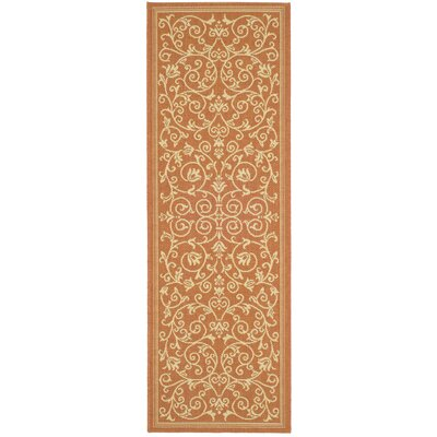 Bexton Persian Terracotta/Natural Indoor/Outdoor Area Rug Rug Size: Runner 24 x 67