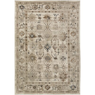 Broadview Beige Area Rug Rug Size: Rectangle 5'2