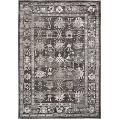 Broadview Gray Area Rug Rug Size: 39 x 52
