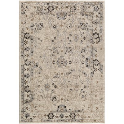 Broadview Multi-Colored Area Rug Rug Size: 39 x 52