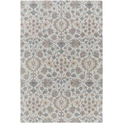 Pottershill Moss & Gray Area Rug Rug Size: 6 x 9