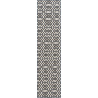 Casper Blue Indoor/Outdoor Area Rug Rug Size: Runner 2 x 8