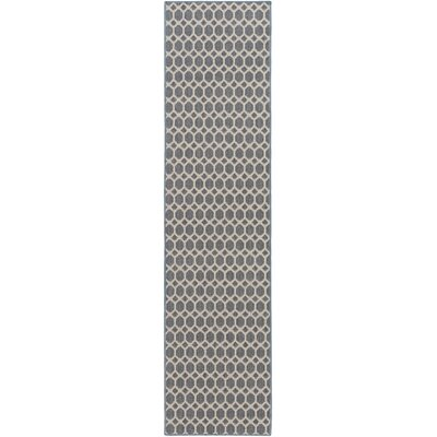 Casper Blue Indoor/Outdoor Area Rug Rug Size: Runner 2 x 12