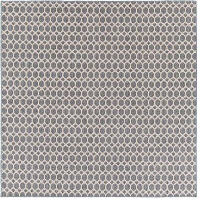 Casper Blue Indoor/Outdoor Area Rug Rug Size: Square 4