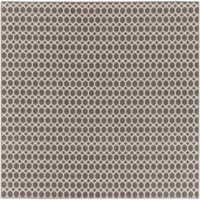 Casper Gray Indoor/Outdoor Area Rug Rug Size: Square 4