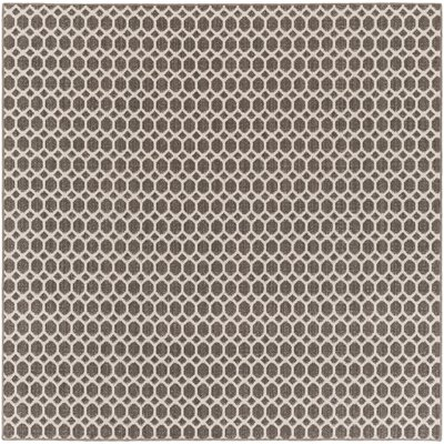 Casper Gray Indoor/Outdoor Area Rug Rug Size: Square 10