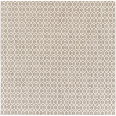 Casper Gray Indoor/Outdoor Area Rug Rug Size: Square 6