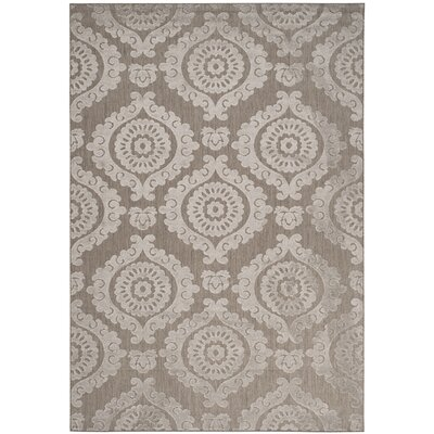 Hughes Suzani Taupe Indoor / Outdoor Area Rug Rug Size: Rectangle 53 x 77