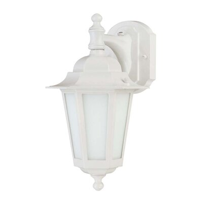 Mayer 1-Light Outdoor Wall Lantern Finish: White