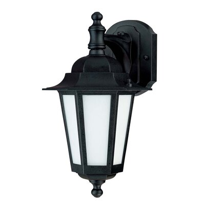 Mayer 1-Light Outdoor Wall Lantern Finish: Textured Black