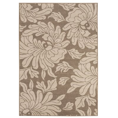 Nash Beige/Taupe Indoor/Outdoor Floral Area Rug Rug Size: 53 x 76