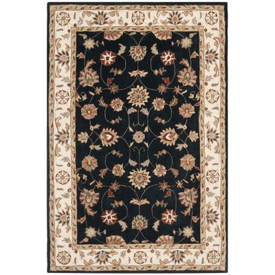 Tuscany Hand-Hooked Navy / Ivory Area Rug Rug Size: Rectangle 9 x 12