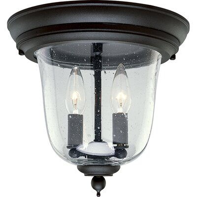 Drumakeely 2-Light Outdoor Semi Flush Mount Finish: Black