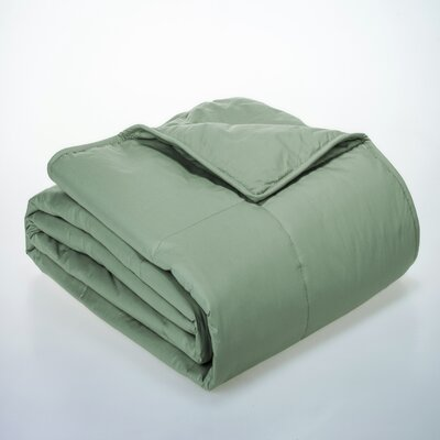Syracuse All Natural Down Alternative 100% Cotton Filled Blanket Size: Full / Queen, Color: Sage
