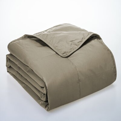 Syracuse All Natural Down Alternative 100% Cotton Filled Blanket Size: Full / Queen, Color: Sesame