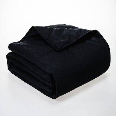 Syracuse All Natural Down Alternative 100% Cotton Filled Blanket Size: Full / Queen, Color: Black