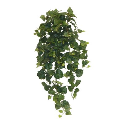 Ivy Hanging Plant Color: Cottonwood