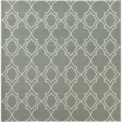 Amato Green Indoor/Outdoor Area Rug Rug Size: Square 89