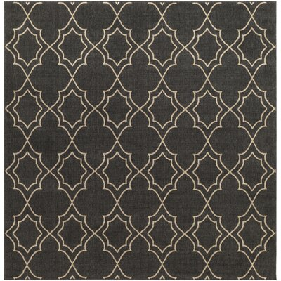 Amato Taupe Indoor/Outdoor Area Rug Rug Size: Square 89