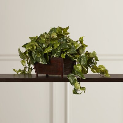 Alcott Hill Dagast Faux Desk Top Plant