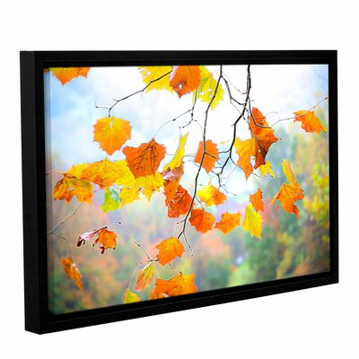 Tree Branch Fall Glow 1 Framed Photographic Print on Wrapped Canvas