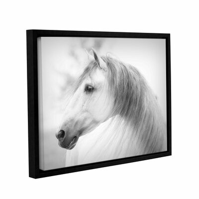 Savino Framed Photographic Print on Wrapped Canvas