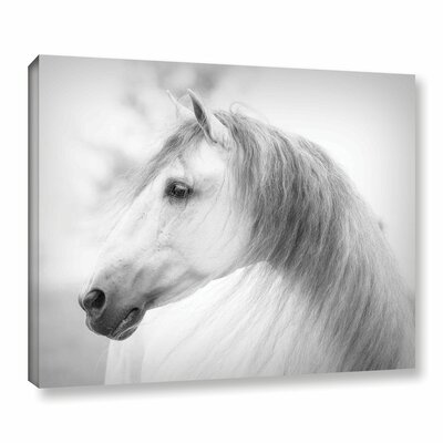 Savino Photographic Print on Wrapped Canvas