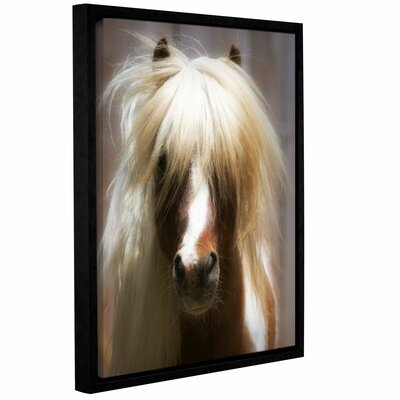 Shetland Pony Framed Photographic Print on Wrapped Canvas Size: 18