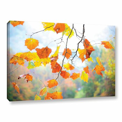 Tree Branch Fall Glow 1 Photographic Print on Wrapped Canvas