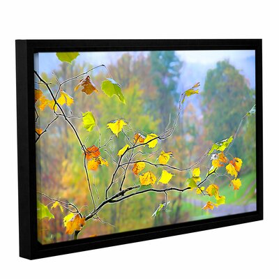 Tree Branch Fall Glow 2 Framed Photographic Print