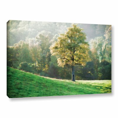 Tree's Evening Glow Photographic Print on Wrapped Canvas Size: 12