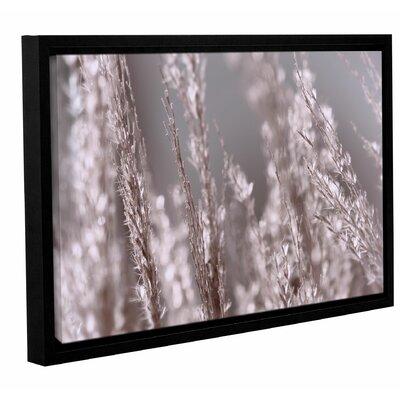 Winter Garden 3 Framed Photographic Print