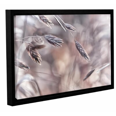Winter Garden 4 Framed Photographic Print