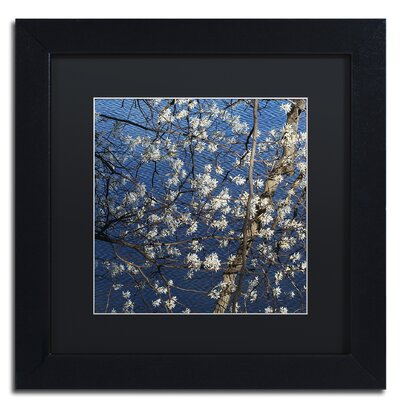 Springtime at the Lake Framed Photographic Print Size: 11