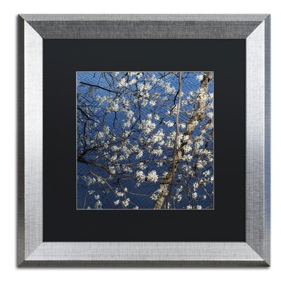 Springtime at the Lake Framed Photographic Print