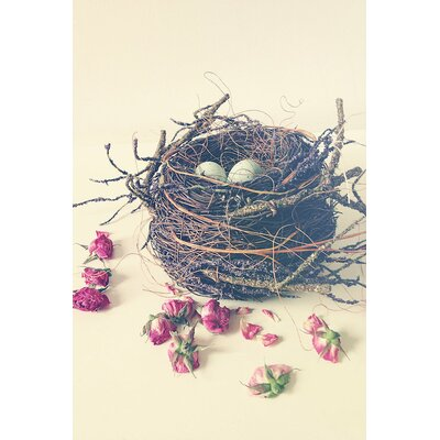 Nest Photographic Print on Wrapped Canvas