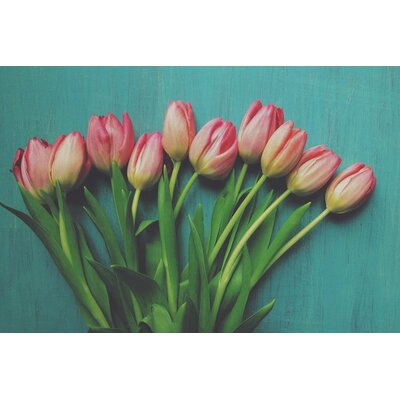 Pink Tulips Photographic Print on Wrapped Canvas