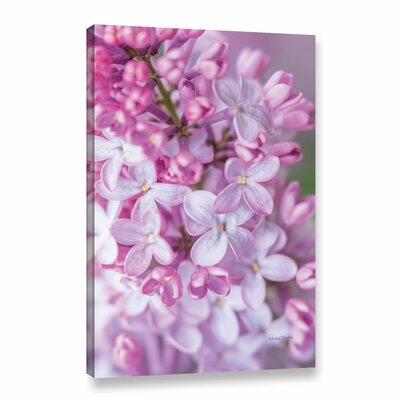 Spring Lilacs II Photographic Print on Gallery Wrapped Canvas