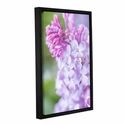 Spring Lilacs II Framed Photographic Print on Gallery Wrapped Canvas
