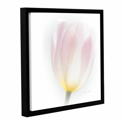 Transculent Framed Photographic Print on Gallery Wrapped Canvas