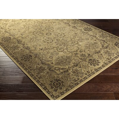 Redding Beige Area Rug Rug Size: Rectangle 53 x 73