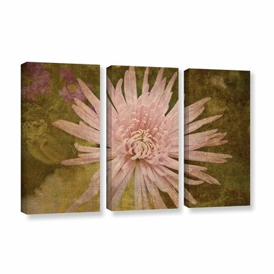 Heirloom Pink 3 Piece Painting Print on Gallery Wrapped Canvas Set