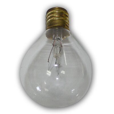 Thomas Incandescent Light Bulb (Pack of 12) Color: Clear