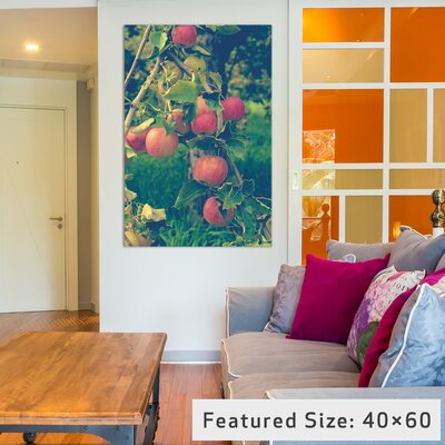 Apple Harvest Photographic Print on Wrapped Canvas Size: 12
